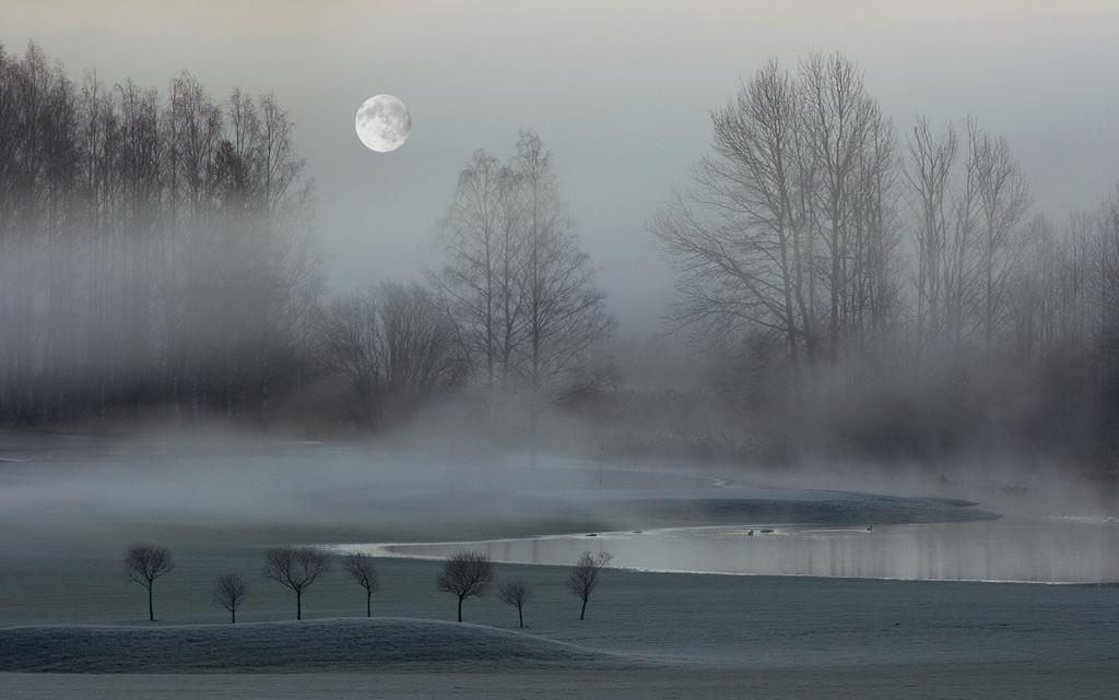 深圳杯优秀  作者:Jussi Helimaki 国家:Finland 标题:Misty morning in October 5