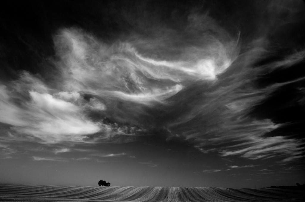 深圳杯铜牌  作者:malcolm cook 国家:England 标题:turbulent sky