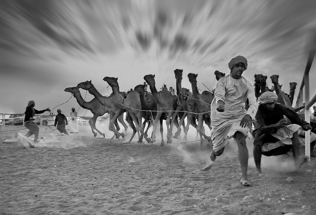 FIAP丝带 作者:Abdollah Alruzaiqi 国家:Oman 标题:runaway