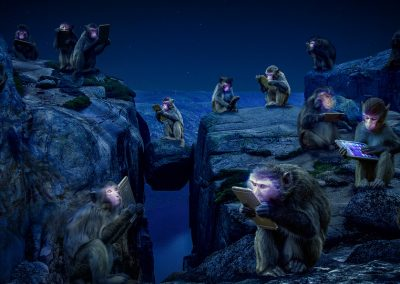 猿猴进化的传说 / guochen wang 王国辰 / China