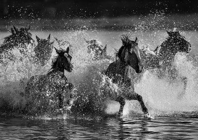 Across the water / Mingyou Zhang 张明友 / China